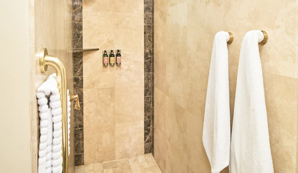Shower with hanging towels | Circus Room | Historic Davenport