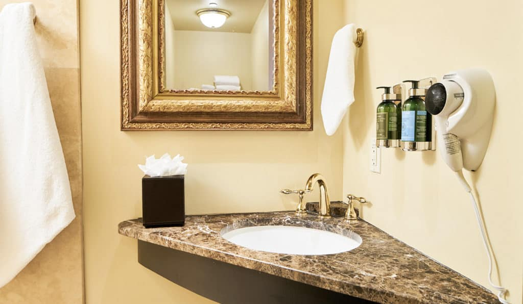 Bathroom Sink | Circus Room | Historic Davenport